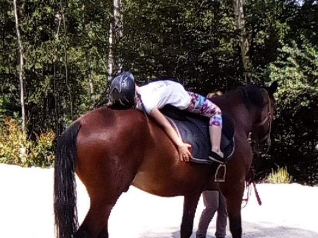 Кати и кончетата